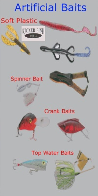 artificial-baits-for-the-lake