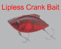 Bass Fishing Lipless Crank Baits