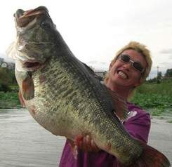 large-mouth-bass-record