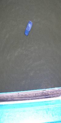 Cell Phone In Water - Should Have Used A Clip Hanger